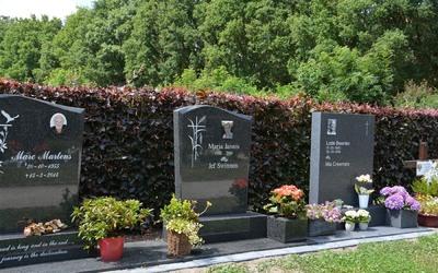 Begrafenissen Witters - Dienstverlening - Grafmonumenten